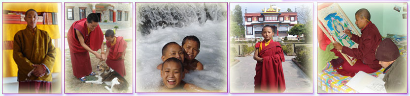 Tibetan Children learning, swimming, petting a dog, standing in front of building